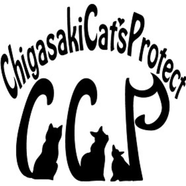 Chigasaki Cat's Protectのカバー写真