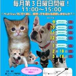 静岡県富士市にて「第7回定期犬猫譲渡会」