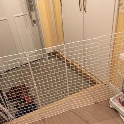 猫玄関飛び出し防止のストッパー