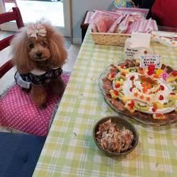 9歳お誕生日会