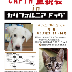 CAPIN里親会inカリフォルニアドッグ