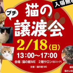 ★プチ譲渡会 in 猫の館ME★