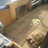 ケヅメリクガメ 甲長50センチのアンディくん サムネイル2
