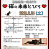 ★東銀座徒歩2分★猫の未来とびら譲渡会★