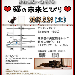 2月24日(土)は猫の未来とびら譲渡会♪