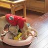 3カ月子犬しずかちゃん記事更新しました サムネイル5