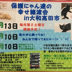 第4回 保護にゃん達の幸せ譲渡会in大和高田市