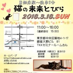 3月18日(日)は東銀座で猫の未来とびら譲渡会