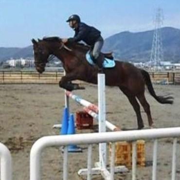 馬も大好きで乗っていました。