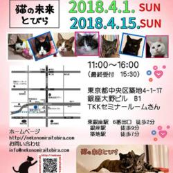 4月1日(日)は東銀座で「猫の未来とびら」譲渡会♪