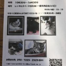4/17(火)本八幡駅前一番街商店街譲渡会 サムネイル1