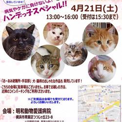 【ハンデっ子スペシャル】里親会開催!