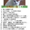 世界初&唯一無二!猫のお見合い会in池袋「厳しい要求無し」
