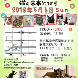 5/6は東京・東銀座で「猫の未来とびら」譲渡会♪