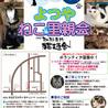 5月26日(土) 地域猫から社会猫へ FIPフリー 四谷猫廼舎 里親会(ボランティア募集中)