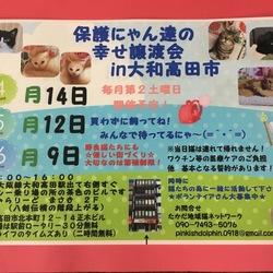 第6回 保護にゃん達の幸せ譲渡会in大和高田市