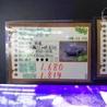 ゼニガメ(クサガメ)甲羅5cm約2年 サムネイル3