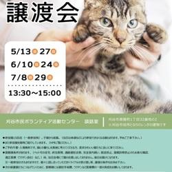 刈谷で開催!!猫の譲渡会!!