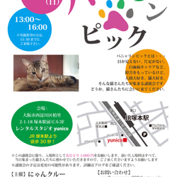 6月3日(日)第9回パニャリンピック-障害猫さんの譲渡会-