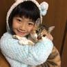 猫部はなはた@なちゅら(保護活動者)