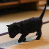 離乳期1ヶ月弱・黒猫3匹兄弟 サムネイル4