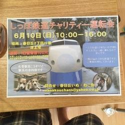 ふれあい会&譲渡会 サムネイル2