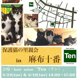 6月19日(火) 地域猫から社会猫へ FIPフリー 麻布十番里親会(ボランティア募集中)