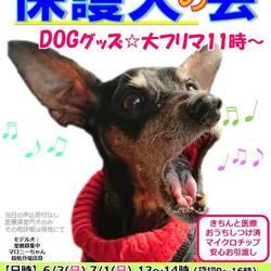 保護犬の会&大フリマ@静岡小山 冷房完備