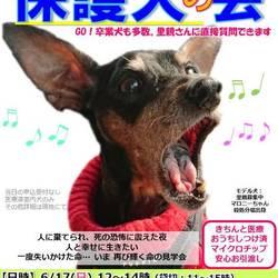 GO!保護犬GO 保護犬の会@イヌマル(相模原市)