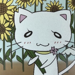 【猫の譲渡会】 西武新宿線 田無駅 5分