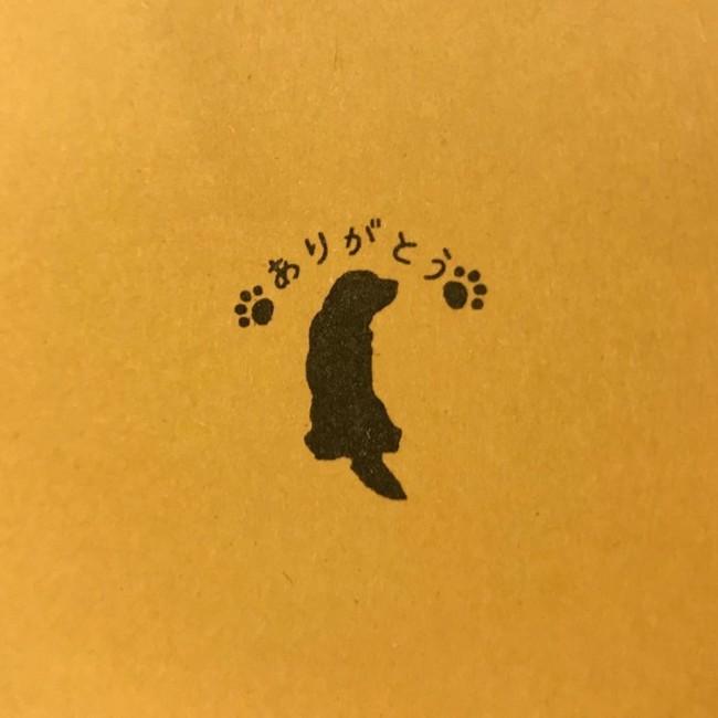 チャコまま@Dog is LOVEのカバー写真