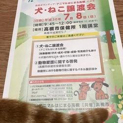 アニマルはにまる高槻による犬・猫譲渡会