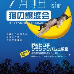 【名古屋市名東区】で猫の譲渡会!