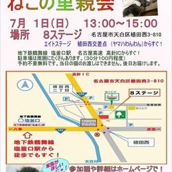 サクラねこ名古屋 ☆子猫祭り開催!☆彡