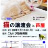 """猫の譲渡会in芦屋 """" 猫のミーナ """""""