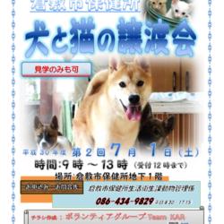 倉敷市保健所収容犬猫譲渡会