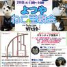 7月28日(火) 地域猫から社会猫へ FIPフリー 麻布十番里親会(ボランティア募集中)