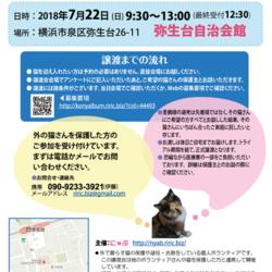 横浜市泉区でねこの譲渡会第8回 7月22日(日)