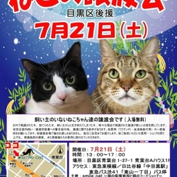 ★7月21日(土)「ねこの譲渡会」smile cat@中目黒(室内)