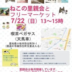 ねこの手の会【猫の譲渡会開催】7月22日(日)13〜15時【小牧】参加猫!