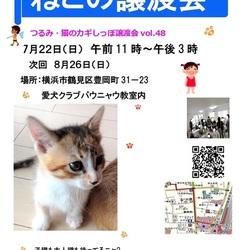 つるみ・猫のカギしっぽ譲渡会vol.48