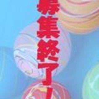 トイプードルmix♀葵 預かり日記あり
