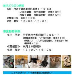 第52回 にゃん☆ぴーす犬猫譲渡会 八千代市