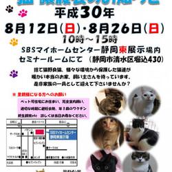 静岡市清水区で猫の譲渡会開催です