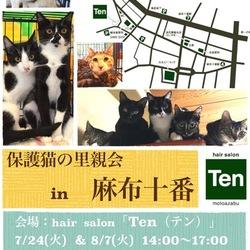 8月7日(火) 地域猫から社会猫へ FIPフリー 麻布十番里親会(ボランティア募集中)