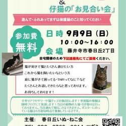 2018年9月9日大阪府藤井寺市にて譲渡会開催します