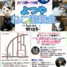 8月17日(金) 地域猫から社会猫へ FIPフリー 四谷猫廼舎 ナイター里親会(ボランティア募集中)