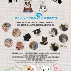 『キャッツイン東京とその仲間たち』子猫のための里親会
