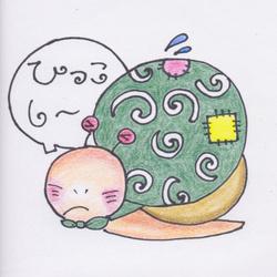 「カンちゃん2世」孵化から2ヶ月(8/28)