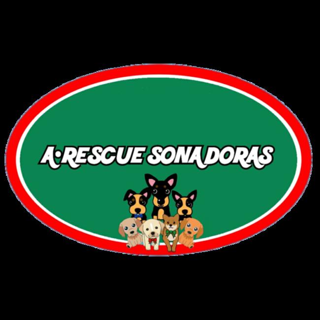 SONA DORASのカバー写真